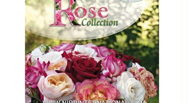 Garden Rose Catalogue FRANCAISE 2020