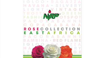 Catalogue Cut Roses 2020 EAST AFRICA