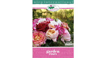 Garden Roses Catalogue 2020 ENGLISH