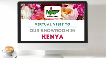 Virtual Visit to our Showcase in KENYA