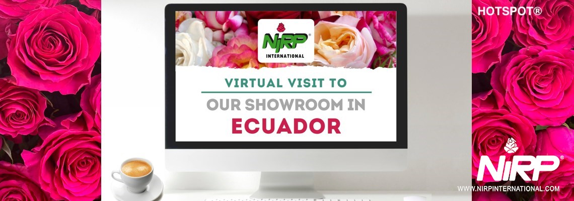 Visita Virtuale al nostro Showcase in ECUADOR