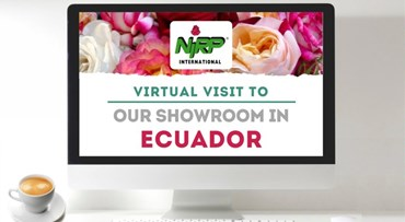 Virtual Visit to our Showcase in ECUADOR