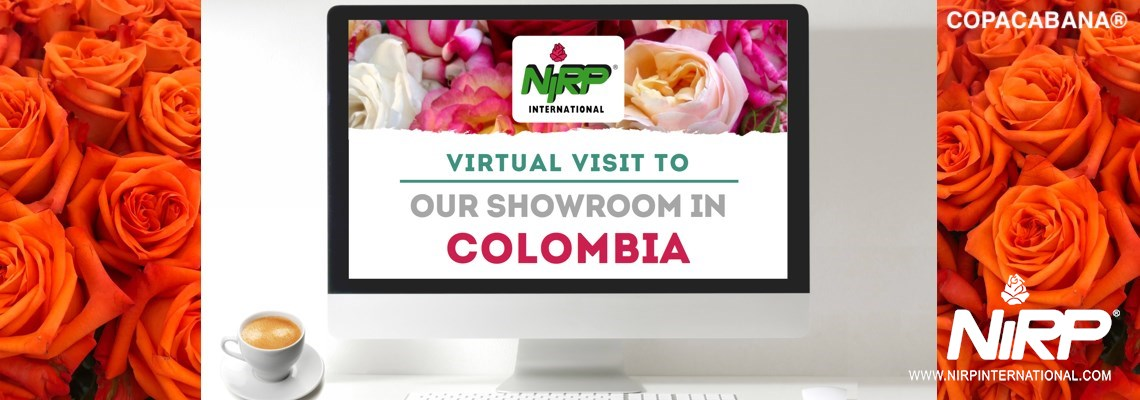 Virtual Visit to our Showcase in COLOMBIA